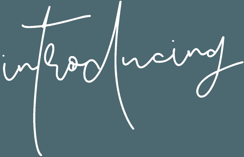 Introducing Script (W) - Sabine Biesenberger